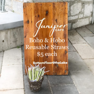 Glass & Stainless Straws