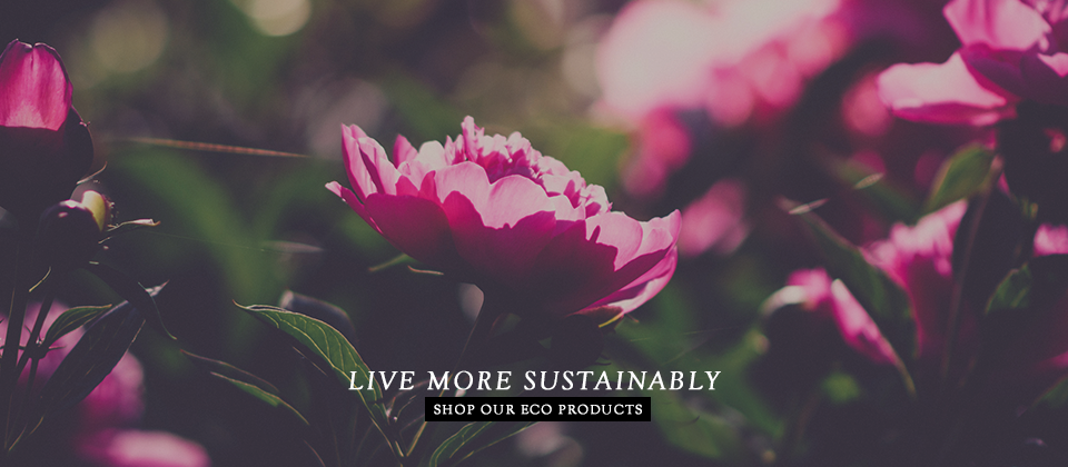 Sustainable Living Products